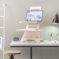 Stan1-Laptop